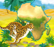 Cartoon cheetah with continent map Royalty Free Stock Photos