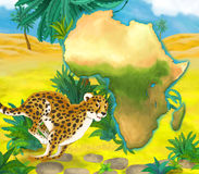 Cartoon cheetah with continent map Stock Images