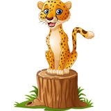 Cartoon cheetah sitting on the tree stump vector illustration