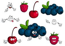 Cartoon cherry, raspberry, blueberries characters Royalty Free Stock Images