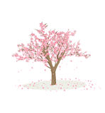 Cartoon Cherry tree Royalty Free Stock Photography