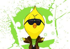 Cartoon chick Royalty Free Stock Image