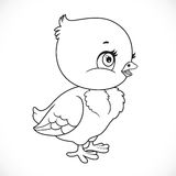 Cartoon chick hatched from an egg outlined Royalty Free Stock Photo