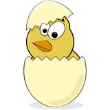 Cartoon chick Stock Images