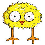 Cartoon chick. Isolated on white Royalty Free Stock Photos