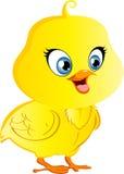 Cartoon Chicken. Cute Cartoon Vector Chicken with bright big eyes Royalty Free Stock Photos