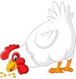 Cartoon chicken eating seeds. Illustration of cartoon chicken eating seeds Stock Photos