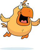 Cartoon Chicken Flying Stock Image