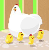 Cartoon chicken with four chickens Stock Image