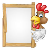 Cartoon Chicken Rooster Sign Stock Photos