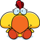 Cartoon Chicken Sitting Stock Image