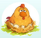 Cartoon Chicken stock images