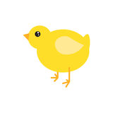 Cartoon chicken vector illustration. Stock Photography