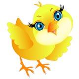 Cartoon chicken. Cartoon chicken on a white background Stock Photography
