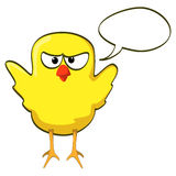 Cartoon chicken yellow angry Royalty Free Stock Photo