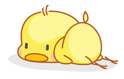 Cartoon chicks posing sleep Stock Image