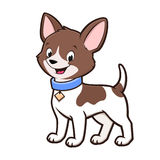 Cartoon Chihuahua. Cartoon vector illustration of a cute chihuahua for design element Stock Photography