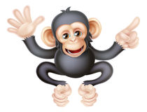 Cartoon Chimp Monkey Pointing Royalty Free Stock Images