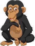 Cartoon chimpanzee isolated on white background. Illustration of Cartoon chimpanzee isolated on white background Royalty Free Stock Images