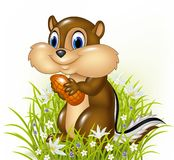 Cartoon chipmunk holding peanut Royalty Free Stock Image