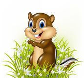 Cartoon chipmunks on grass background. Illustration of Cartoon chipmunks on grass background Stock Images
