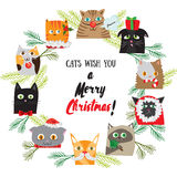 Cartoon Christmas background with cute cat characters. New Years post card design. Chistmas kitten holiday template. Vector Royalty Free Stock Image