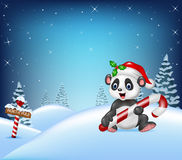 Cartoon Christmas background with panda holding candy Royalty Free Stock Photography