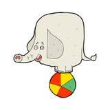 Cartoon circus elephant Royalty Free Stock Photos