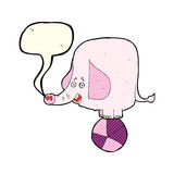 Cartoon circus elephant with speech bubble Stock Images