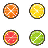 Cartoon citrus set Royalty Free Stock Photography