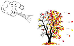 Cartoon cloud that blows wind to a tree who loses fall foliage. Vector illustration of a cartoon cloud that blows wind to a tree who loses fall foliage Stock Images