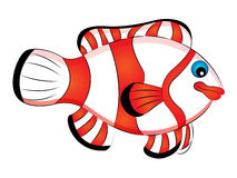 Cartoon Clown Fish Stock Image