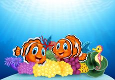 Cartoon clownfish and seahorse with underwater landscape Royalty Free Stock Image