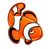 Cartoon clownfish Royalty Free Stock Image