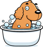 Cartoon Cocker Spaniel Bath Stock Image