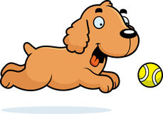 Cartoon Cocker Spaniel Chasing Ball Royalty Free Stock Image