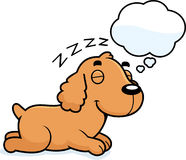 Cartoon Cocker Spaniel Dreaming Royalty Free Stock Images