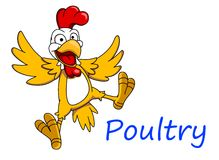 Cartoon cockerel character Royalty Free Stock Photo