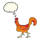 cartoon cockerel with thought bubble Royalty Free Stock Images