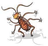 Cartoon Cockroach. Stock Photo