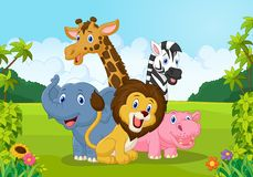 Cartoon collection animal africa Royalty Free Stock Photo