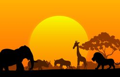 Cartoon collection animal in the africa Stock Photography