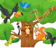 Cartoon collection animal on the trees Stock Photo