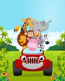 Cartoon collection animal vacation with red car Stock Image