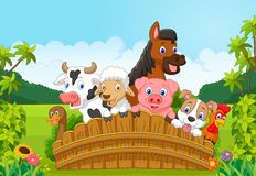 Cartoon Collection farm animals in the forest. Illustration of Cartoon Collection farm animals in the forest Royalty Free Stock Photography