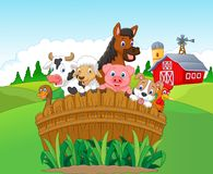 Cartoon Collection farm animals Royalty Free Stock Images