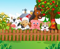 Cartoon Collection farm animals Stock Photos