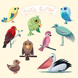 Cartoon collection with funny little birds. Pelican, duck, parrot, eagle, heron. Stock Image