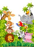 Cartoon collection happy animal in the jungle Stock Images
