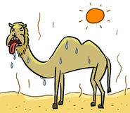 Cartoon color animal expression camel thirsty Royalty Free Stock Images